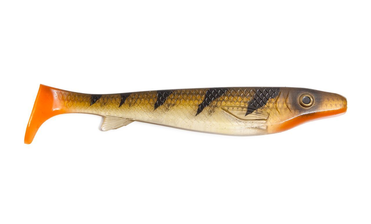 Picture of Fatnose Shad - Transparent Perch