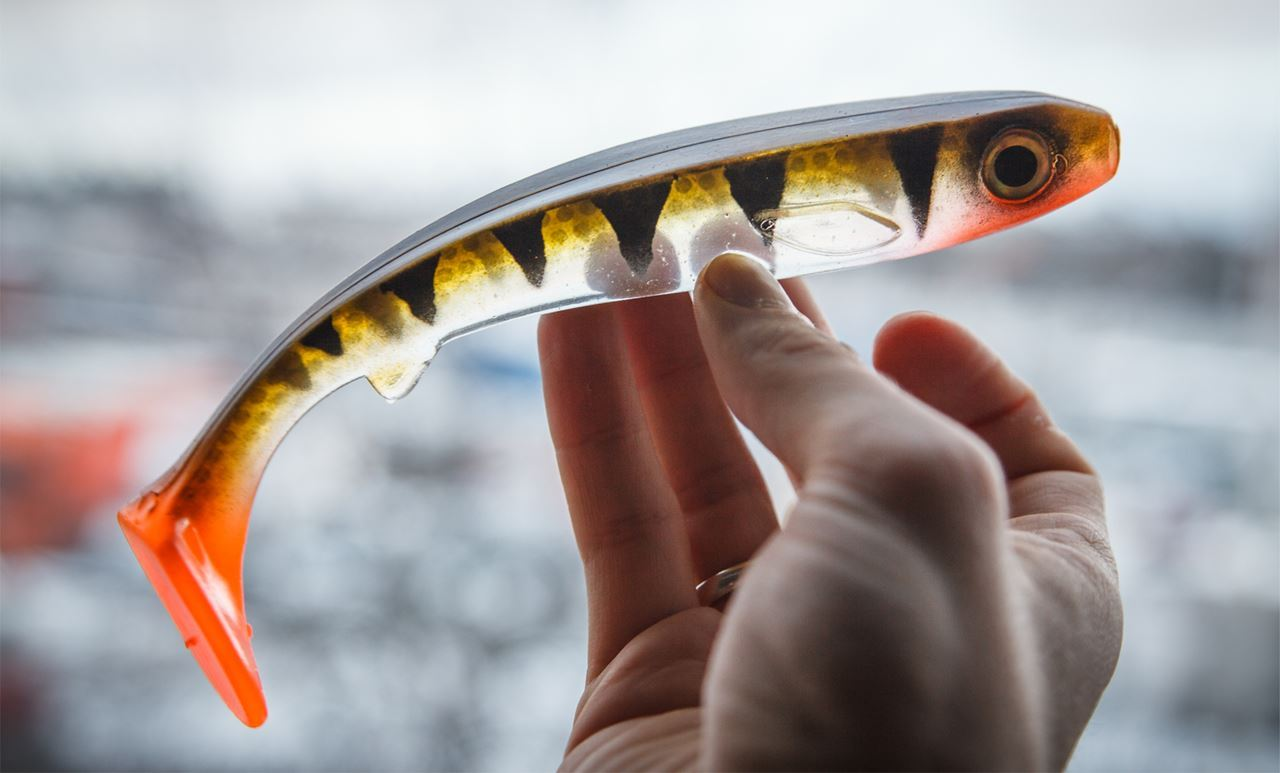 Picture of Flatnose Shad - Transparent Perch
