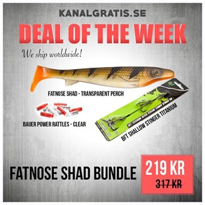 Bild på Fatnose Shad Bundle - Transparent Perch