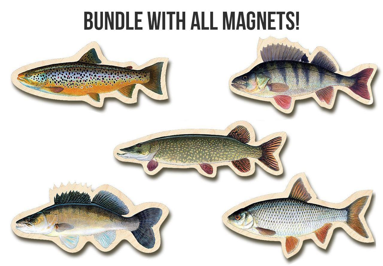 Picture of Fish Magnets Bundle