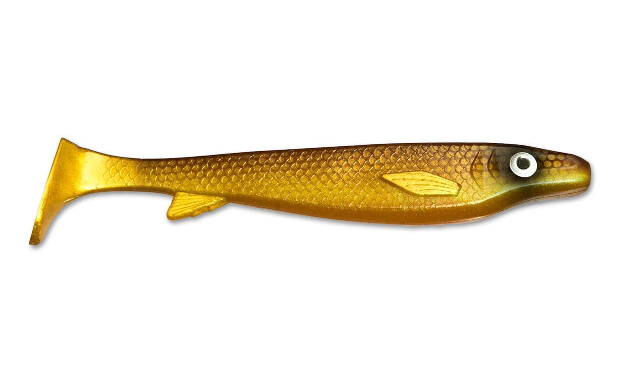 Picture of Fatnose Shad - Golddigger