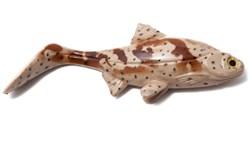 Picture of Hooligan Roach - Grouper