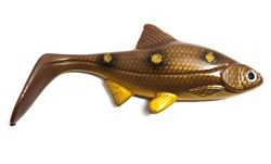 Picture of Hooligan Roach - Spotted Bullhead