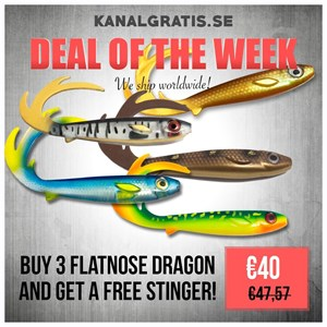 Picture of 3 Flatnose Dragon of your choice - stinger for free