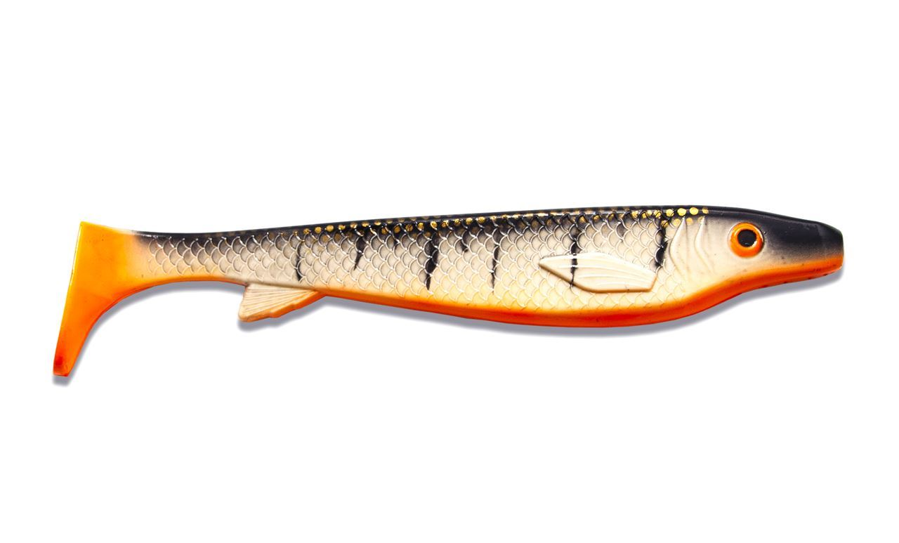 Picture of Fatnose Shad - Search and Destroy