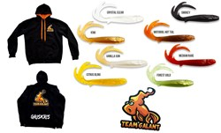 Picture of BUNDLE (Perfect Christmas Gift) Team Galant Hoodie and a 10-pack of Flatnose Baby Dragon (+ 1 sticker)