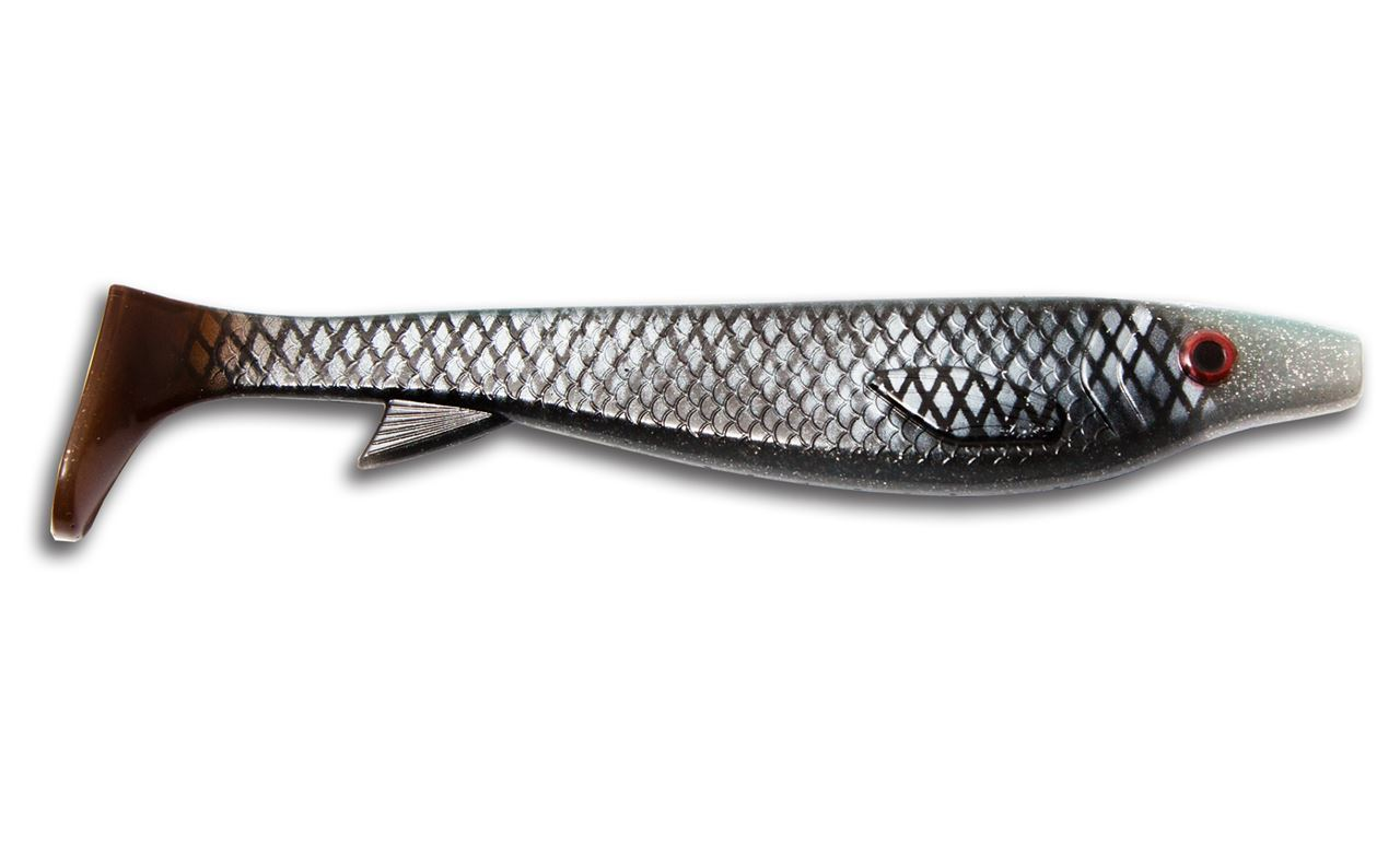 Picture of Fatnose Shad - Real Roach